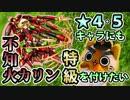 【モンスト実況】☆4.5キャラにも特級を付けたい!【不知火カリン】
