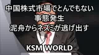 【KSM】中国株式市場でとんでもない事態発生 泥舟からネズミが逃げ出す