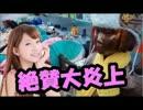 日本の国会議員が慰安婦はプロだったと発言してファビョーン!