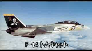 迷スコンバット F-14トムキャット~冷戦