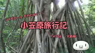 【ゆっくり】小笠原旅行記 Part26 ~父島編~ 夜明道路その1