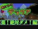 【実況】俺たちのテラリア- #12