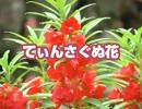 てぃんさぐぬ花 沖縄の定番ソング