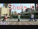 【ちょい】 Shake it ! 【踊ってみた】