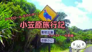 【ゆっくり】小笠原旅行記 Part29 ~父島編~ 夜明道路その2