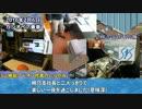 【Simutrans Experimental】鯉川鉄道経営記 第31話