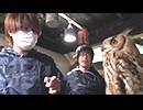 鳥カフェ&釣り堀行ってみた動画 予告編【レトルト・牛沢】