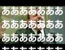 【第2回】総統閣下と行く!視聴者参戦UR協力バトル(前編)