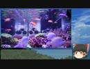 サンゴ水槽 システム紹介動画 Part2 OF水槽詳細