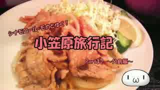 【ゆっくり】小笠原旅行記 Part37 ~父島編~ 夜の街歩きその1&夕食