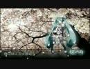 【雀(*公*)】言葉とともに「桜ノ雨」歌ってみた