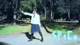 【月猫】 SPiCa 【踊ってみた】