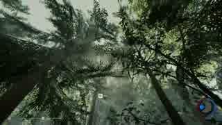 [TF]サル、森へ[v0.35]