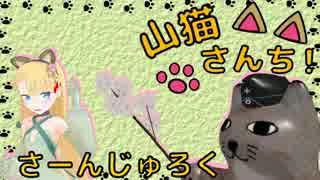 【WoT】山猫さんち! さーんじゅろく【ゆ