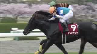 【競馬】2016年 大阪杯 アンビシャス【GII】