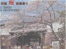 【桜前線便り】一般公開された皇居と、熊本菊池城山公園の桜[桜H28/4/5]