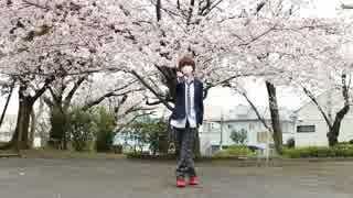 【ヒカル♂】 桜ノ雨 踊ってみた 【もう春ですね】