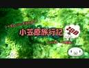 【ゆっくり】小笠原旅行記 Part44(前編) ~父島編~ 境浦周辺シュノーケル