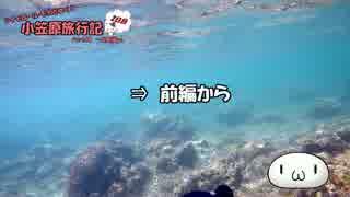 【ゆっくり】小笠原旅行記 Part44(後編) ~父島編~ 境浦周辺シュノーケル