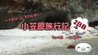【ゆっくり】小笠原旅行記 Part45(前編) ~父島編~ 境浦戦跡巡り