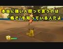 【2人で実況】 ☆ポケパーク2 BW☆ 【Part15】