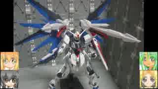 MGフリーダムver2.0 BMスターウォーズ MSG