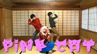 【速度松】PiNK CAT踊ってみた【にゃーち