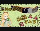 【WoT】山猫さんち! 号外の四【ゆっくり実況】