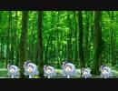 【15分耐久】アオイダケ【作業用】