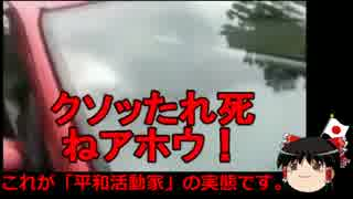 【ゆっくり保守】無法極まる沖縄の自称平和活動家たち。