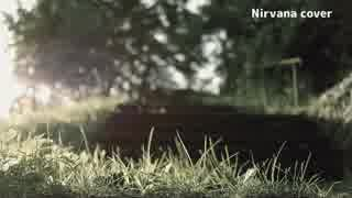 Nirvana 【cover】