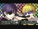 PERFECT HUMAN 【歌ってみた】