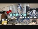 【ゆっくり】冬の北海道一人旅 part29 帰宅編 新千歳空港