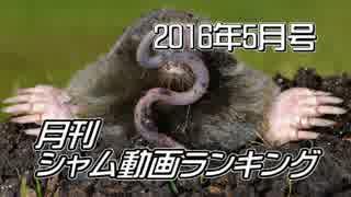 月刊シャム動画ランキング 2016年5月号