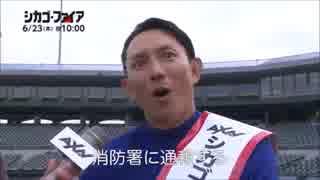 【MLB】2016年メジャーリーグ珍プレー好プレー(6月編) thumbnail