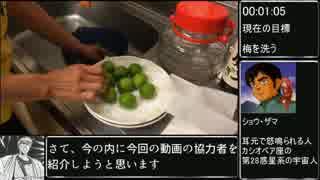梅酒作り_RTA_18:47