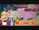 【Minecraft】Pixelmonのすゝめ part30【Pixelmon】