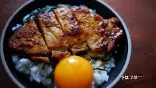【夏を】ひとり豚丼祭りしてみた。【ぶっ