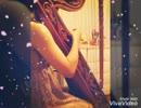 【アルパ】 キミの詩(arpa arrange)【弾いてみました】