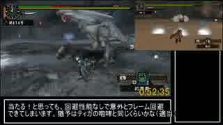 【MHP2G】 縛り村クエRTA 9時間56分19秒 p