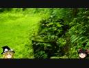 ゆっくりの田舎と自然 第5話「里の山城は迷い道 3の2」