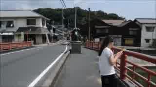 兄と妹のポケモンマスターへの道【ポケモ