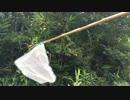 蟻戦争#27 虫取りGO~昆虫ゲットだぜ!~編