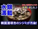 【韓国産のシジミから水銀】 漁期が終わるまで放置!