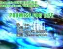 【ニコカラ】PROMISE FOR LIFE【off vocal】
