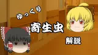 【ゆっくり解説】ゆっくり寄生虫解説#1~赤