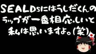【ゆっくり保守】SEALDs牛田「安倍首相の