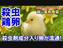 【韓国で恐怖の鶏卵】 猛毒殺虫剤入りの卵が無検査流通!