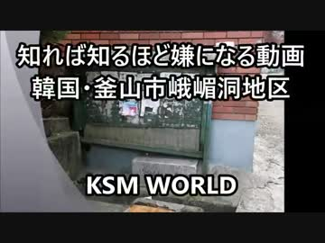 【KSM】知れば知るほど嫌になる動画 韓国・釜山市峨嵋洞地区 日本人墓地