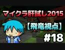 【Minecraft】マイクラ肝試し2015 #18【飛竜視点】